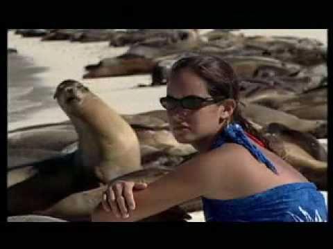 Ecuador, Life at its Purest!-Amazonia & Galapagos (english)