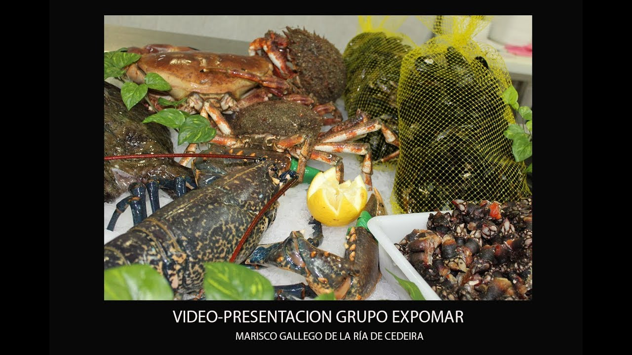 Video de empresa de Marisco Cedeira- Expomar