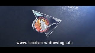 Hebeisen Whitewings Official Video