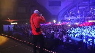 Paluch - Cardio (Live @ Wrocław Hip Hop Festival)