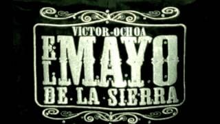El Mayo de La Sierra - Niña Linda