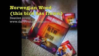 Norwegian Wood (this bird has flown) - Beatles cover