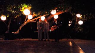 Such Great Heights - Iron & Wine Cover at D&T Wedding