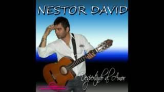 Nestor david no lo superare