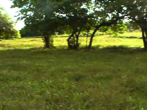 Rocky Point, Nicaragua Real Estate, Lot 13