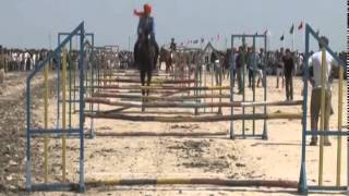 Border Horse and Camel festival held at Nada Bet in Banaskantha