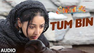 TUM BIN Full Song (AUDIO) | SANAM RE | Pulkit Samrat, Yami Gautam, Divya Khosla Kumar width=