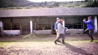 4Litro - _A Cavar com Stylhe_ (GANGNAM STYLE (강남스타일)