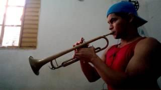 Coração Teimoso - Pedrinho Pegação - Trompete