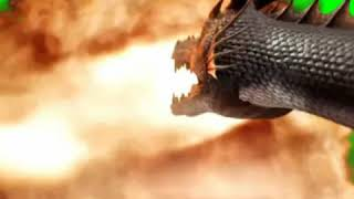 Dragon attack with fire on green screen for vfx