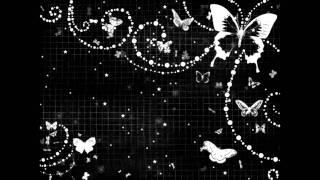 Bushido - Schmetterling - lyrics x'3