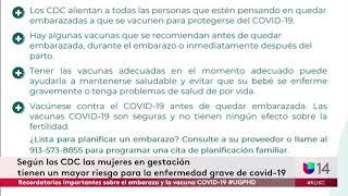 Recordatorios importantes sobre el embarazo y la vacuna COVID-19 #UGPHD