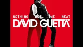 David Guetta ft. Nicki Minaj - Turn Me On + Lyrics