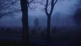 Forgotten - Tim Schaufert