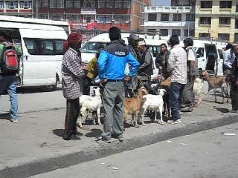6 What happens to beggars.AVI