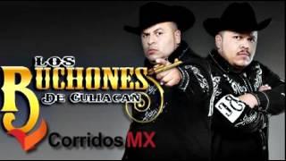 Fiesta De Corridos - Los Buchones De Culiacan - Estudio 2012