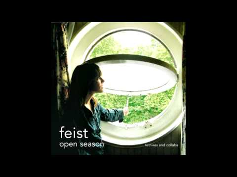 feist-the-simple-story-kevin-kong
