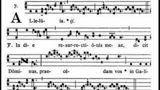 Dominica in Albis - Alleluia, In die (Gregorian chant)