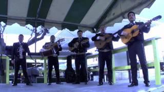 Mariachi Arriba Mexico