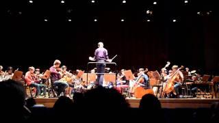 Paradise Symfonic Orchestra cover