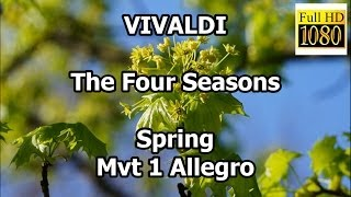 Vivaldi The Four Seasons Spring Mvt 1 Allegro classical music meditation pictures full hd