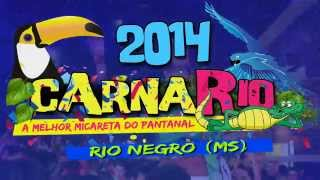 CarnaRio 2014