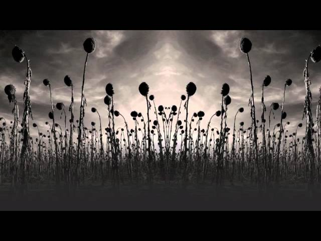 Audio de la canción Amnesia de Dead Can Dance