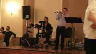 TUPA MIRCEA trompeta hora de la Bacau live lautari folclor Milano Torino Italia +393209639098