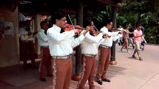 Mariachi Cobre LIVE with Another Mega Favorite