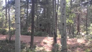 Solo Camping Colorado - Rampart Range: Scouting Location
