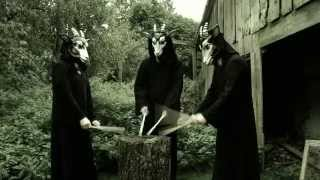 THE DEVIL & THE UNIVERSE - Danaus Plexippus (official Video)