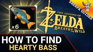 How to Find Hearty Bass | Zora Gear Upgrade | Zelda Breath of the Wild