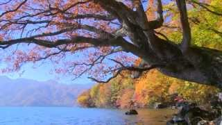 "Lake in Autumn,Chuuzennjiko ""Beautiful Scenery""秋景色、中禅寺湖奥日光"
