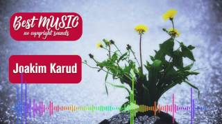 Wild Flower - Joakim Karud [Best MUSIC no copyright sounds] - royalty free music happy
