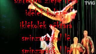 Patzivota Varekai Cirque du Soleil