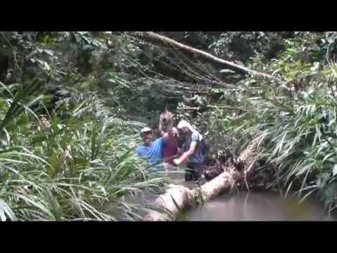 The Amazon in Ecuador – Adventure Motorcycling.mpeg