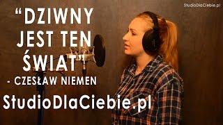 Dziwny jest ten świat - Czesław Niemen (cover by Sabina Pałac)