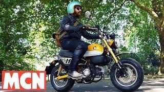 Honda Monkey Bike | First Ride | Motorcyclenews.com