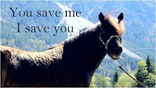 You save me I save you