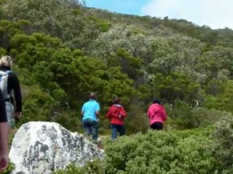 Conquering the Cape Peninsula