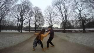 Gemini | What so not |  RESET |  Crow Magnus & Katharina Bierach