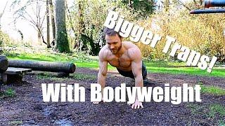 Bodyweight Traps Workout - Beginner