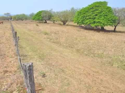 Rocky Point, Nicaragua Real Estate Opportunity