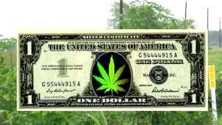 """Lets All Grow Some Weed """"Official Music Video"""" Subject 2 Change"""
