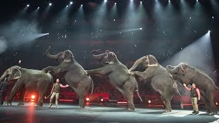 Ringling Bros. to Retire Its Circus Elephants