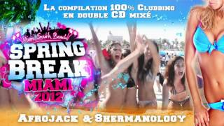 SPRINGBREAK MIAMI 2012 (Official Video)