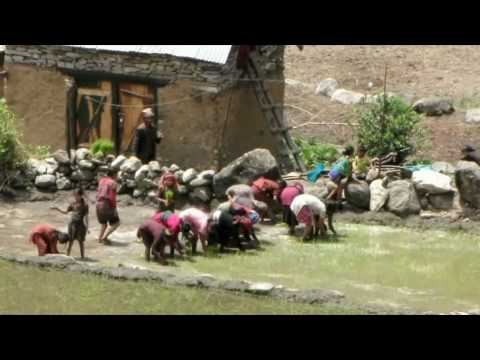 Crazy NEPAL 2010 – Highlights