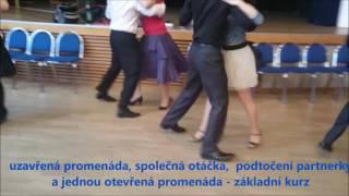česká polka