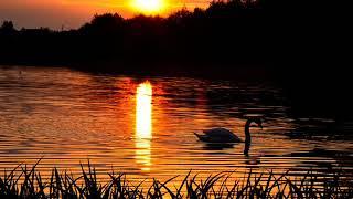 Jezioro szczęścia (z rep. Bajm) - Aneta Sabuda