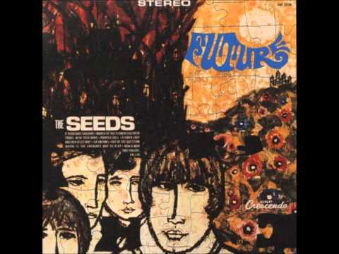 the-seeds-travel-with-your-mind-ariochinaski